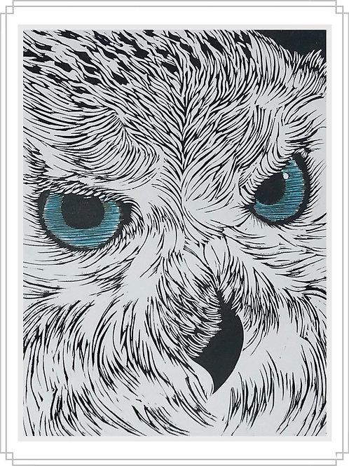 Owl#1