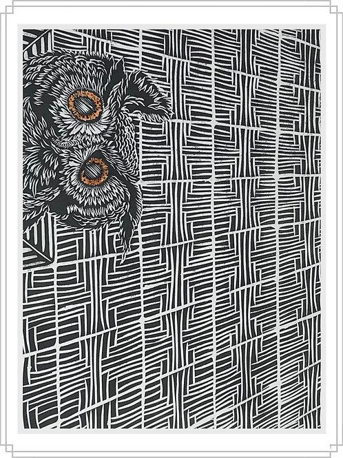 Owl#6