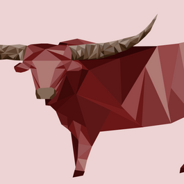 Minimalist Animal Color Studies