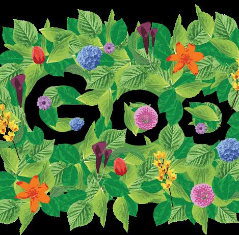Google Homepage Design