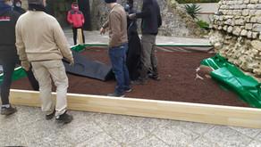 Création d'un Jardin Antique au Musée Archéologique d'Antibes