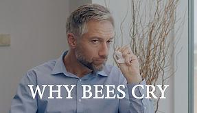 Bees Poster YT v2.jpg