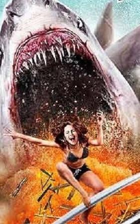 6-head-shark-attack-header_edited.jpg