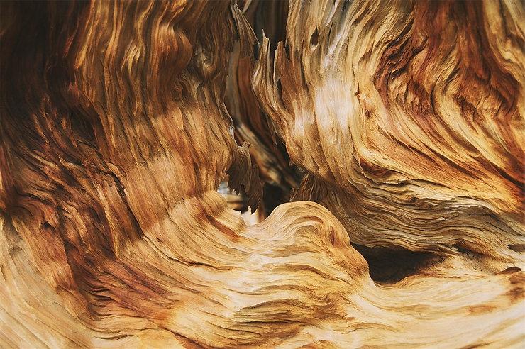 wood-691545_1920.jpg