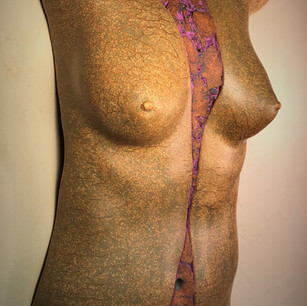 Dick Graveline - Inside/Out Sculpture