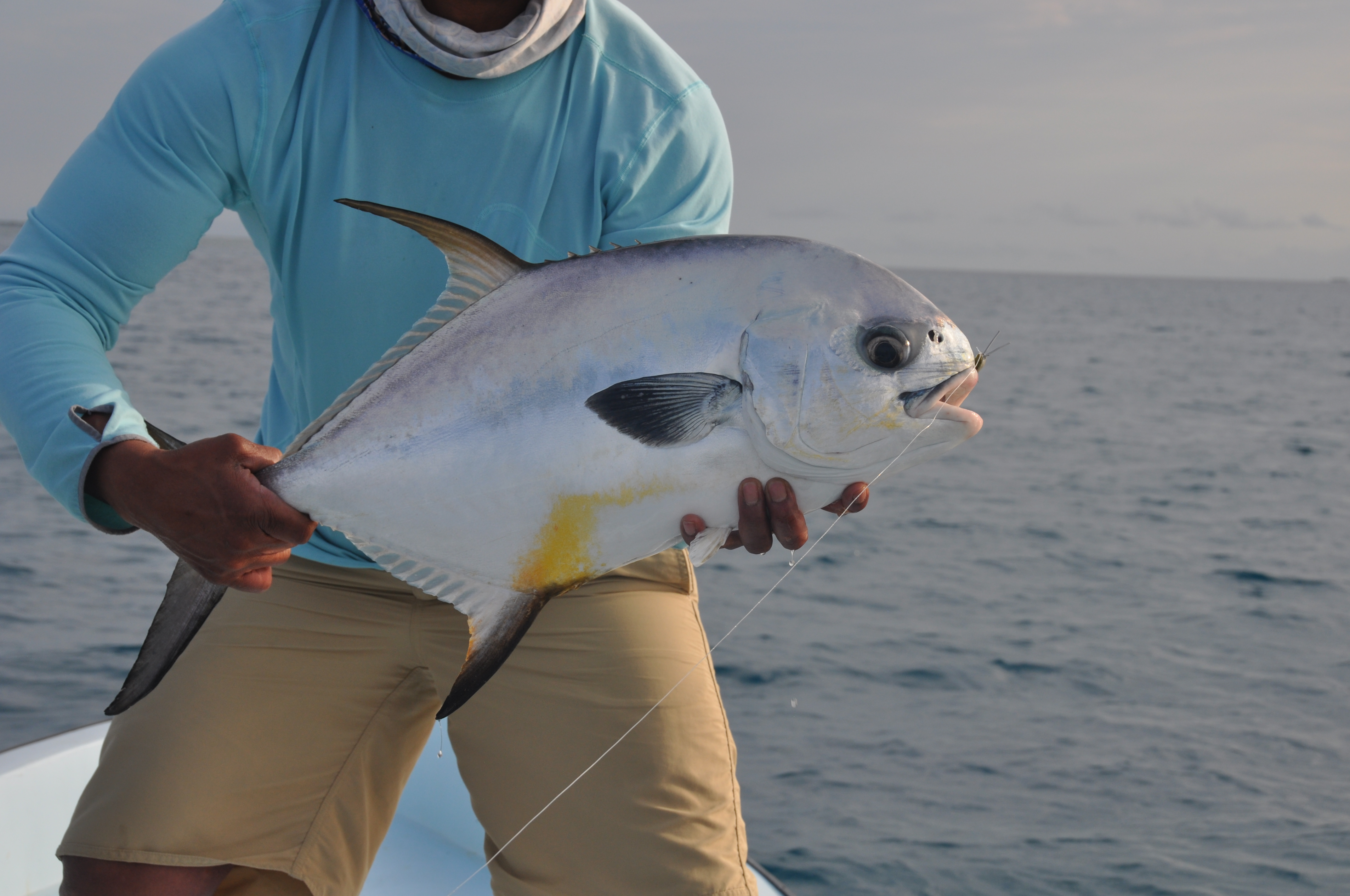 Belize Fly Fishing , Guided Tours