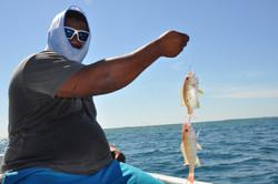 Handline fishing