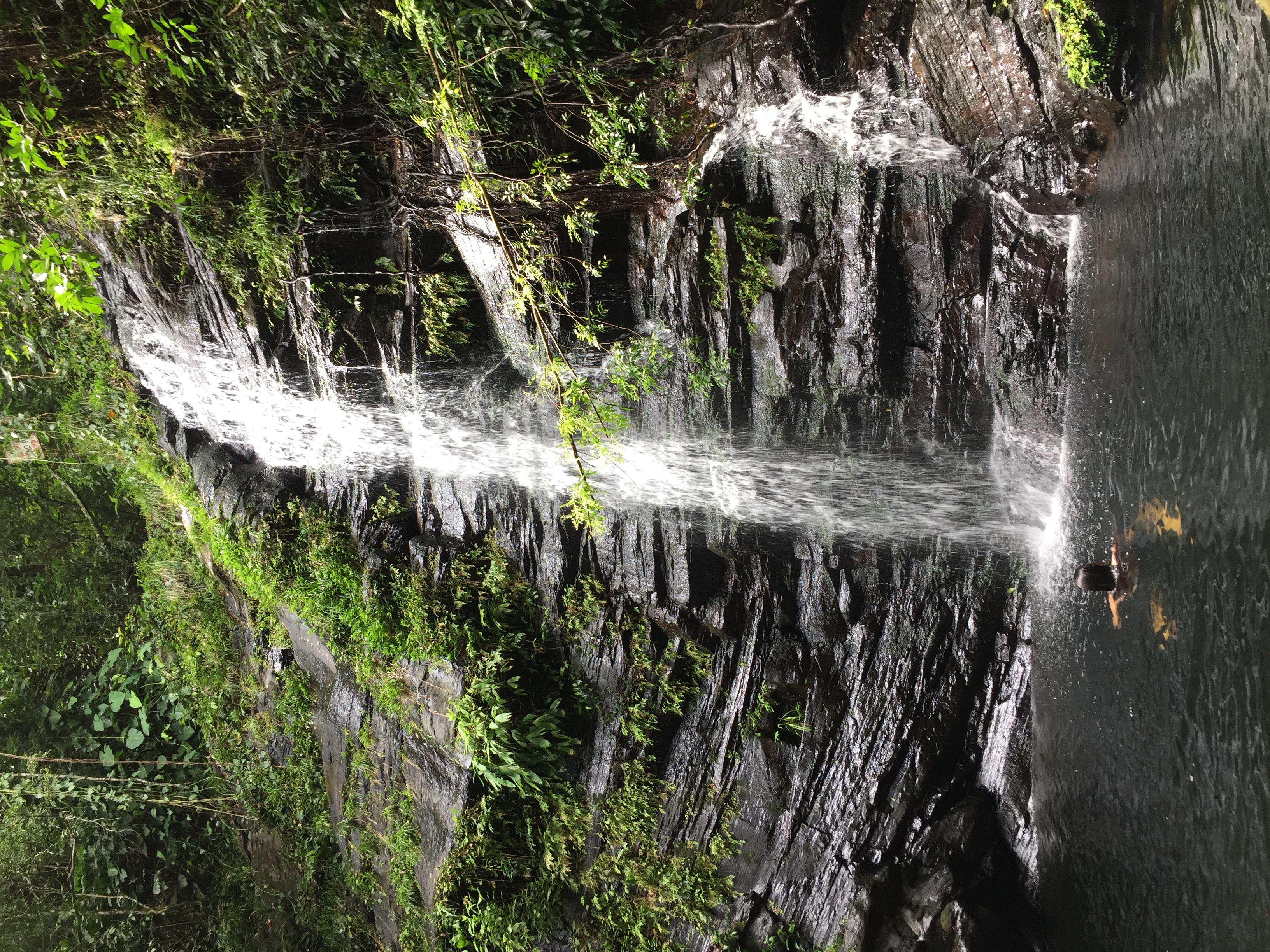 Belize Waterfall Tour