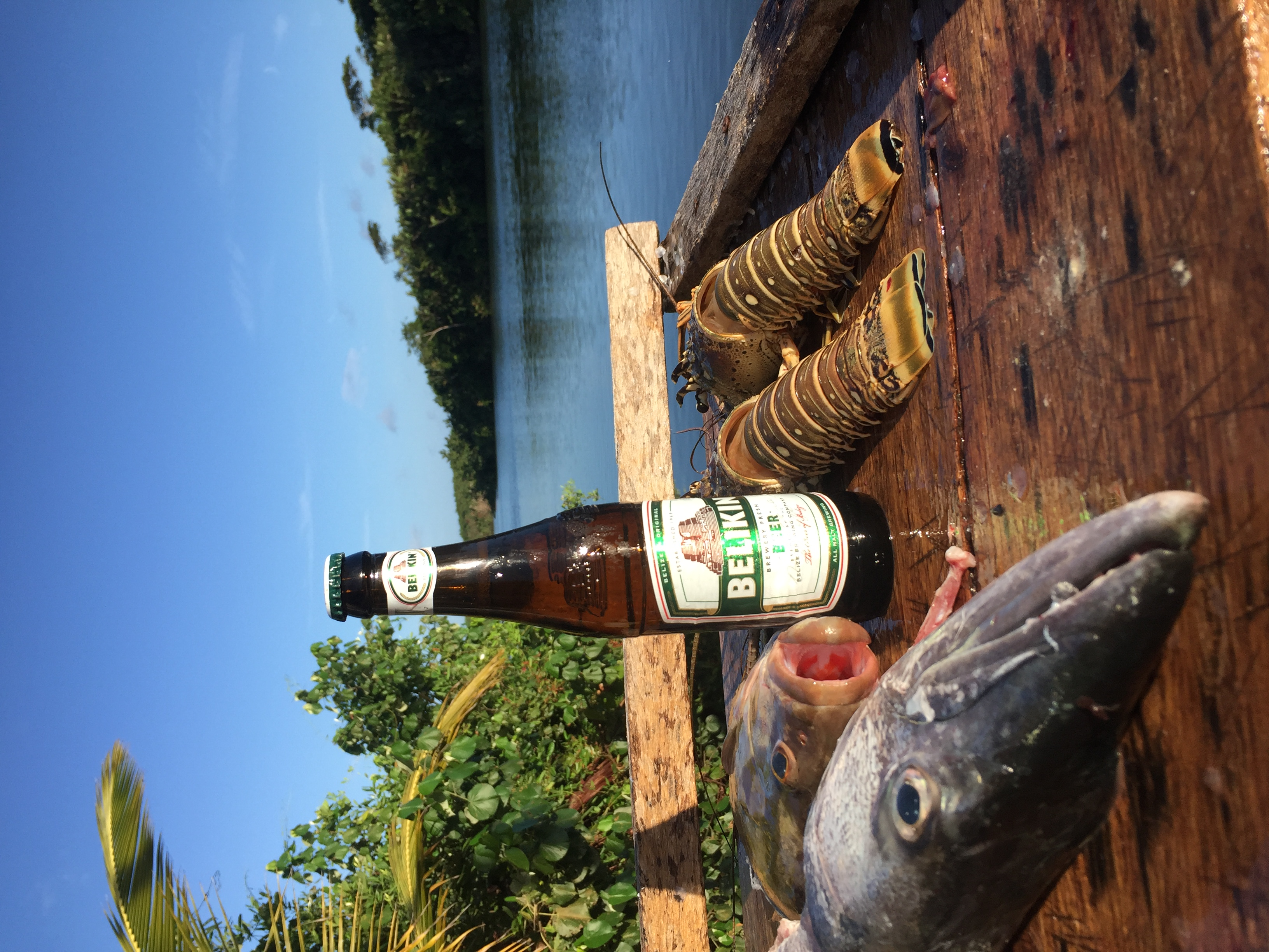 Fishing Charters from Hopkins Belize
