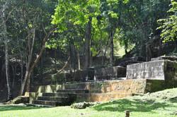 Mayan Ruins tour from Hopkins