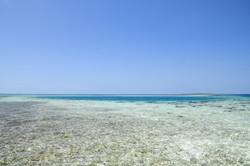 Flats fishing in Belize