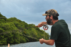 Casting a Fly Rod