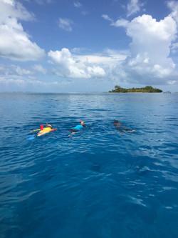 Belize Barrier Reef Snorkeling