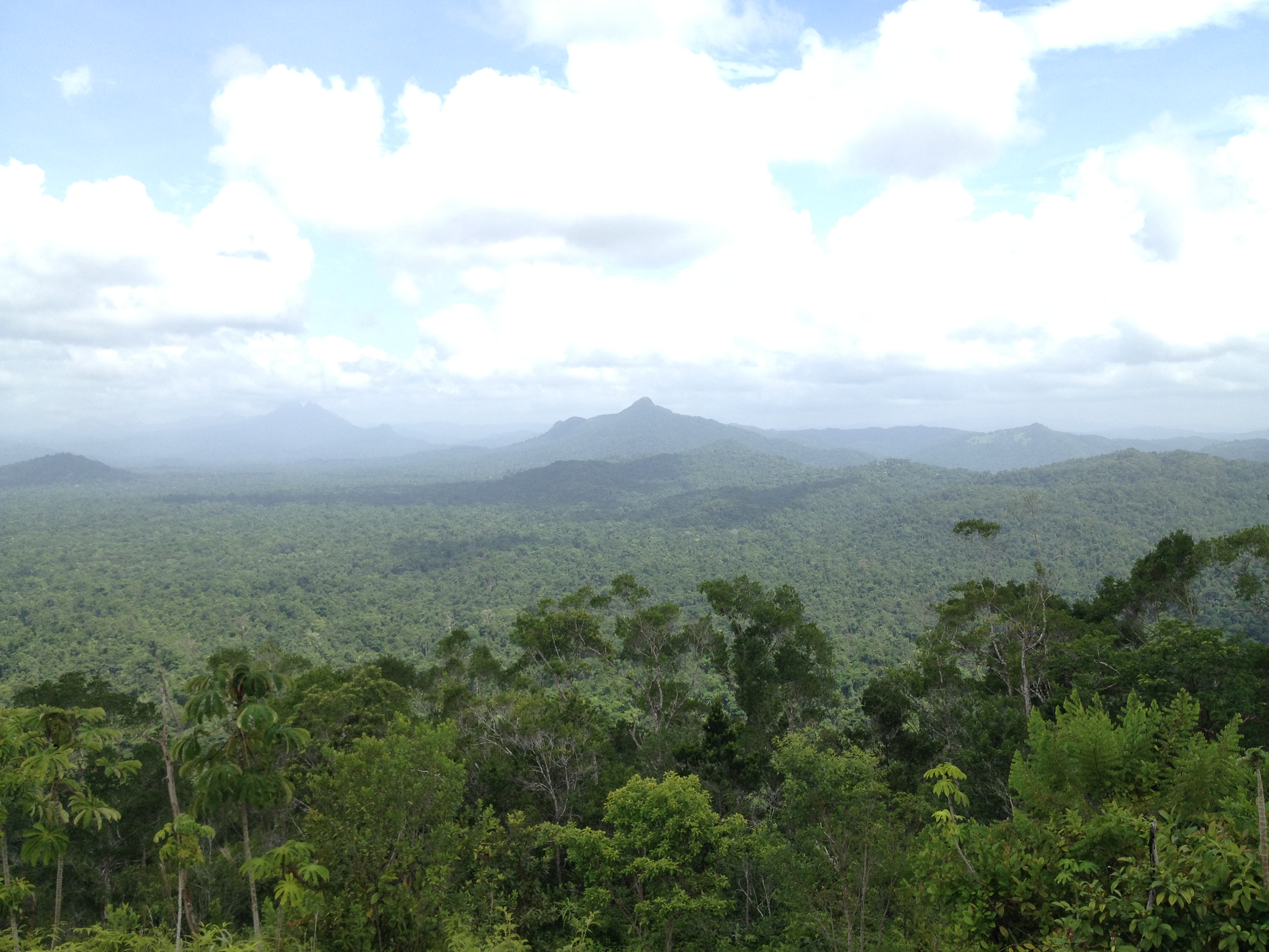 Mayan Mountain View
