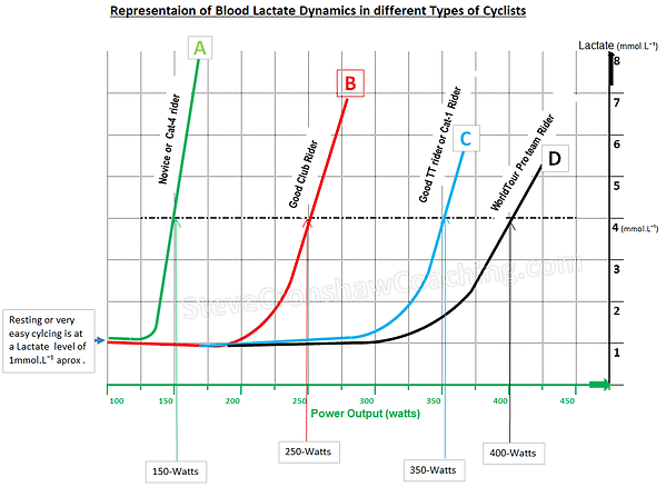 Representaion of Blood Lactate Dynamics