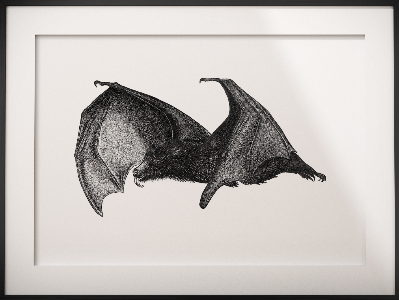 Flying Fox/Bat