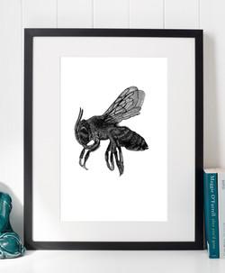 Bee Sideways