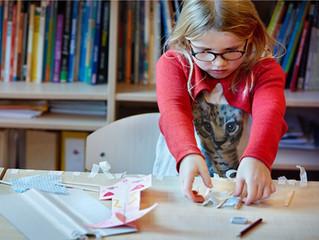 Een duurzame borging van Wetenschap & Technologie in het basisonderwijs