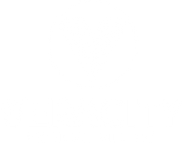 Veracity Logo -  Stacked (White).png
