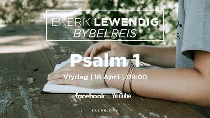 Bybelskool   Psalm 1 [video]