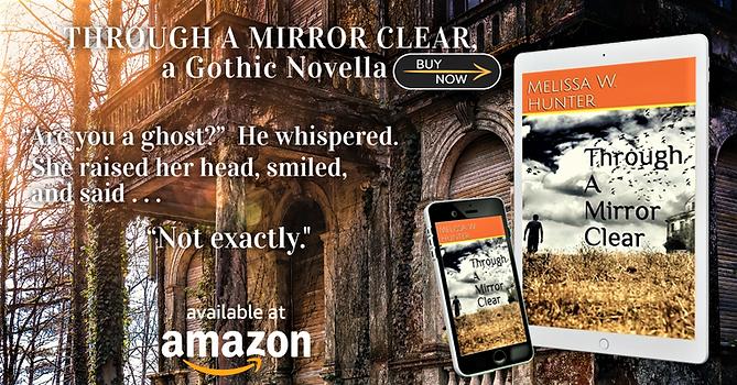 Through a Mirror Clear Book Bub Cover.pn