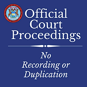 Official Court Proceedings (1).png