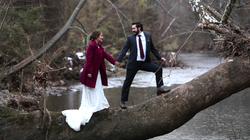 wedding bride groom climbing tree