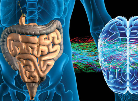 Healthy Gut, Healthy Brain