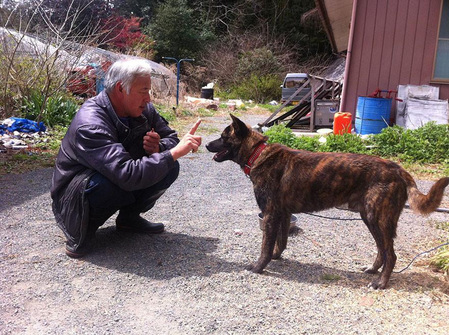 guardian-fukushima-abandoned-animals-naoto-matsumura-6.jpg