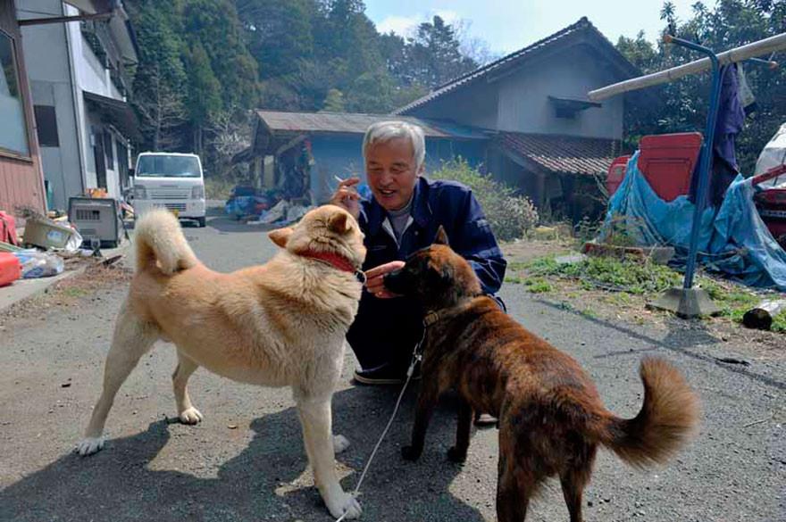 guardian-fukushima-abandoned-animals-naoto-matsumura-12.jpg