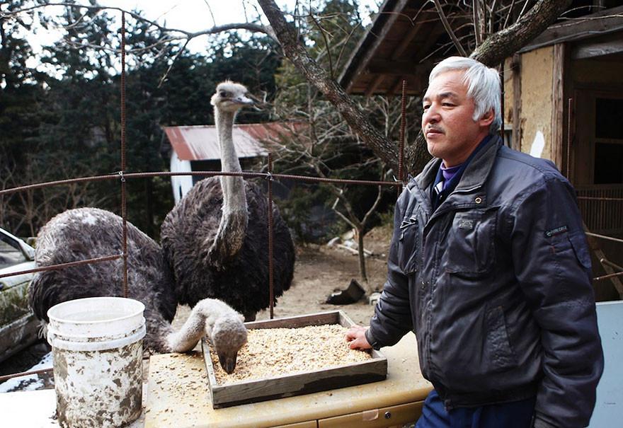 guardian-fukushima-abandoned-animals-naoto-matsumura-7.jpg