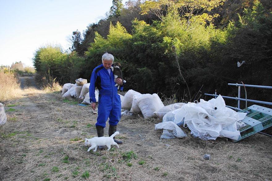 guardian-fukushima-abandoned-animals-naoto-matsumura-3.jpg