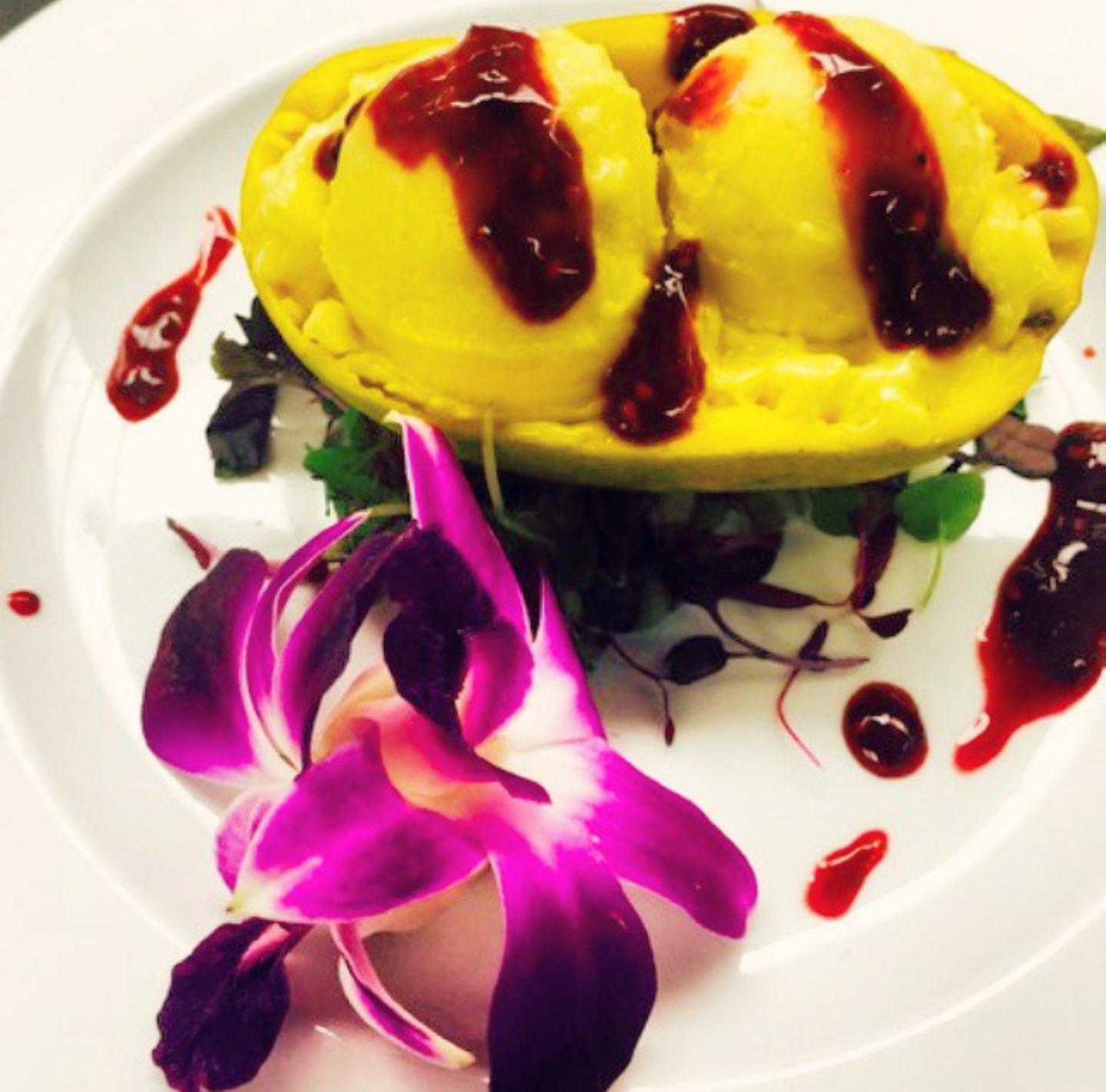 Mango Sorbet with Raspberry Coulis