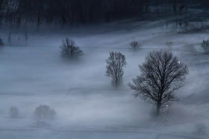 Avvolti nella nebbia