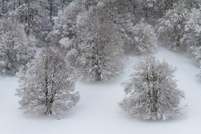 Abito invernale