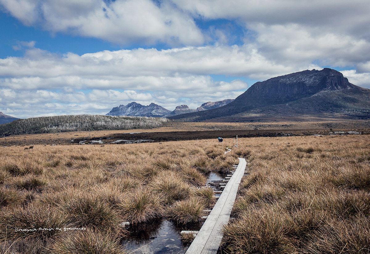 The Overland Track, Cradle Mt, Tas