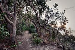 Otford to Bundeena, NSW