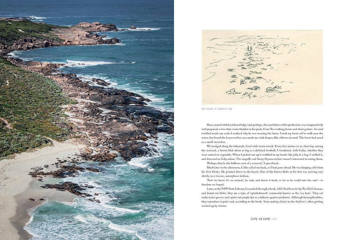 Cape Leeuwin to Cape Naturaliste, WA