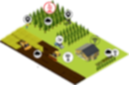 IoT - Smart Forest