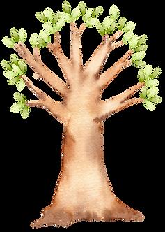 árvore.png