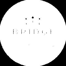 BWC_Branding Colors Logos Feb 2020-04.pn