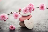 zen photo 2.png