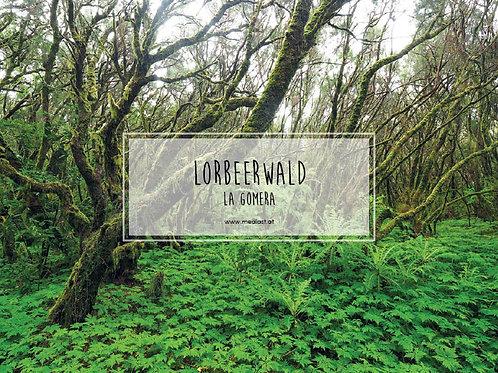 Lorbeerwald / 70x50cm