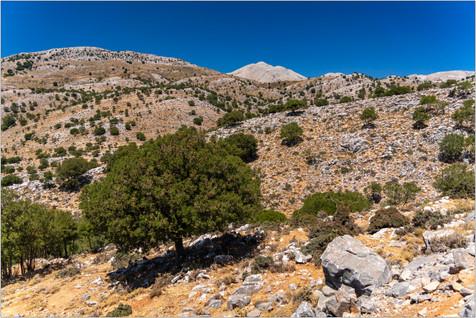 2021_Kreta_0809_029.jpg