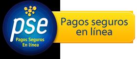Boton Pagos PSE Grupo Motor