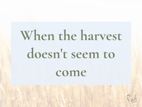 When the harvest doesn't seem to come