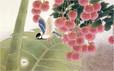 Birdsm14.jpg