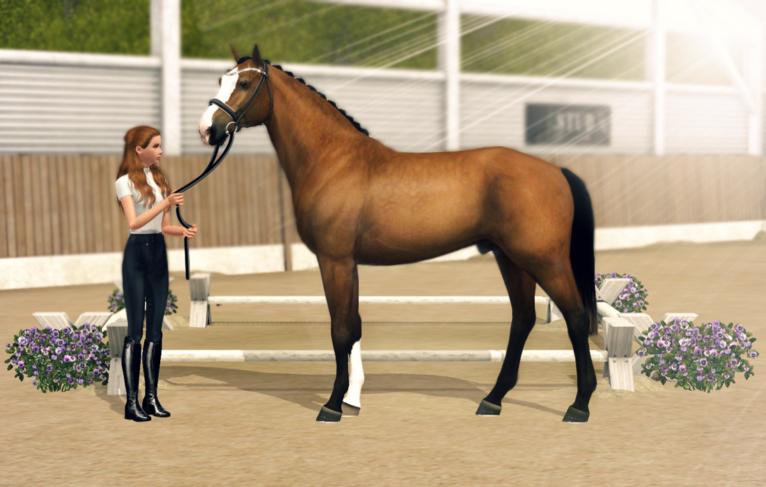Hickstead RZ confirmation new