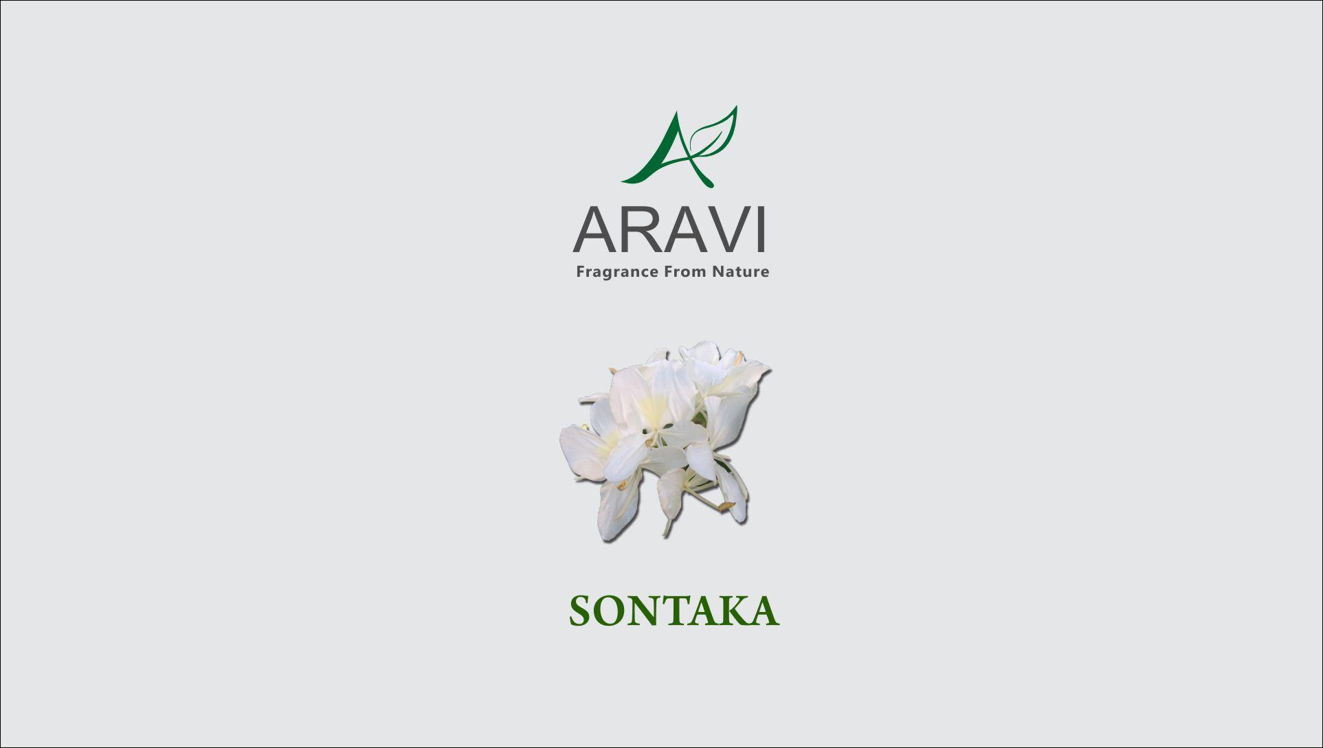 Sontaka