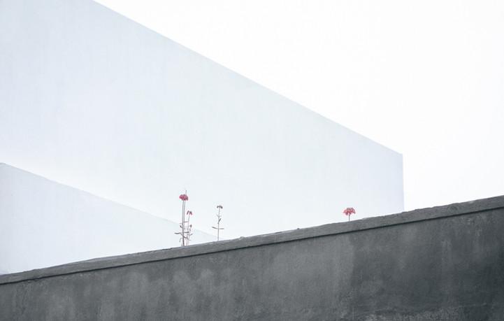 CONCRETA-2.jpg